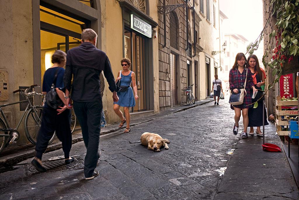 Florence, Italy street scene